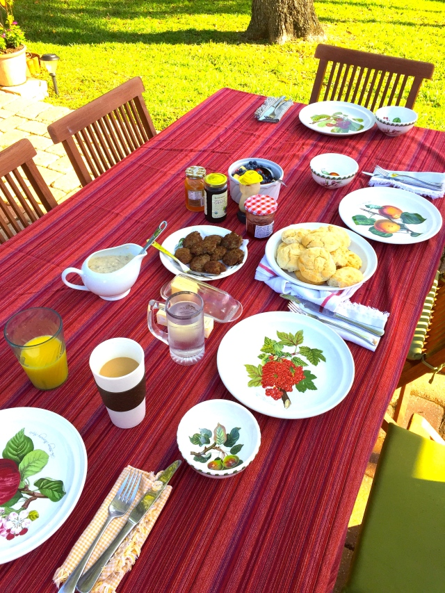 Kathy made a delicious spread of fruit, biscuits, and sausage gravy served on the back patio.  Yes please!