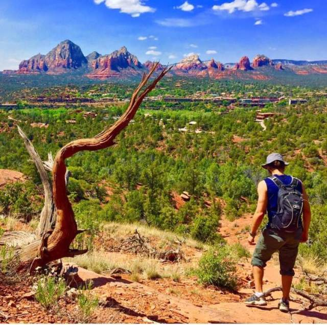 Climbed the mountains above Sedona, and realized Arizona is not ALL desert
