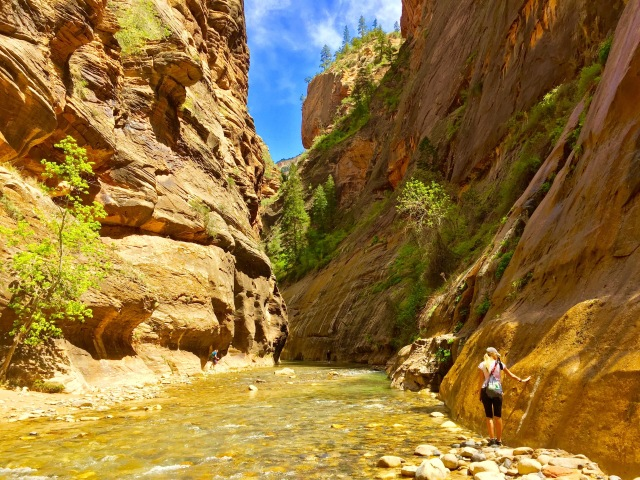 Walked The Narrows in Zion